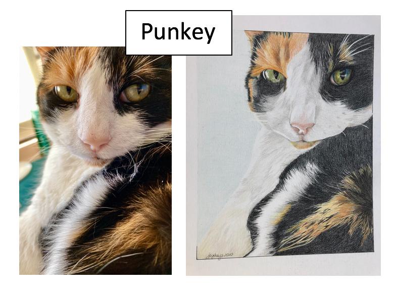 Punkey by Jaye Hays