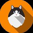 Cat-04.png