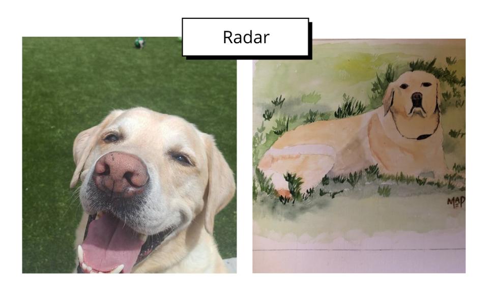 Radar by Margaret Peacock