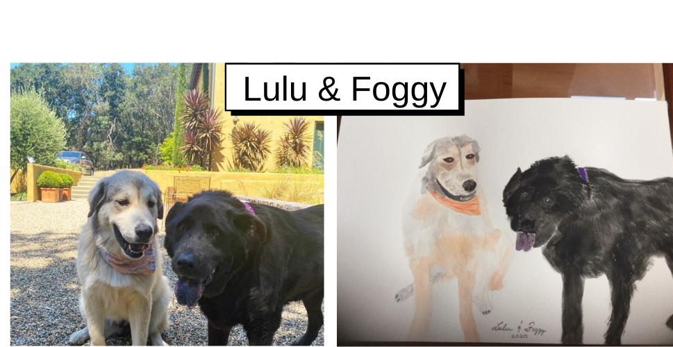 Lulu & Foggy by Lee Wanetik