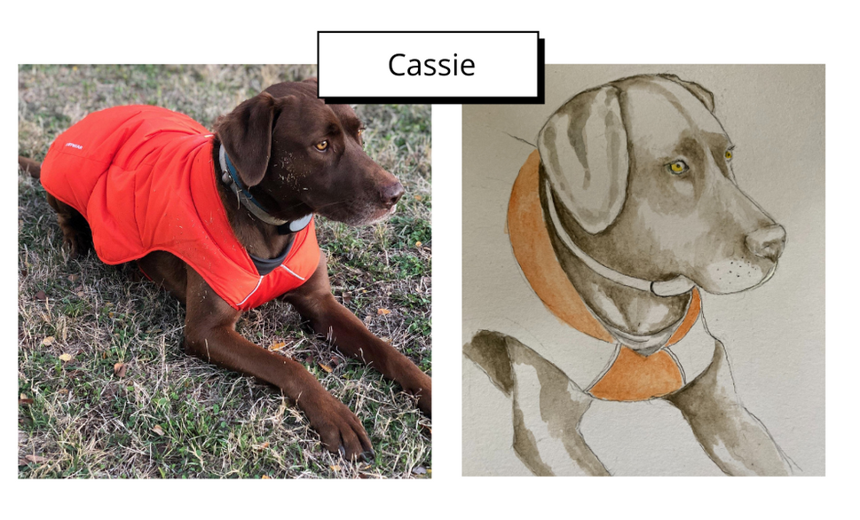 Cassie by Kathi Wright