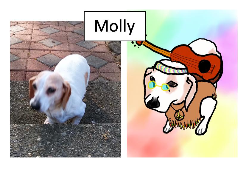 Molly by Randy