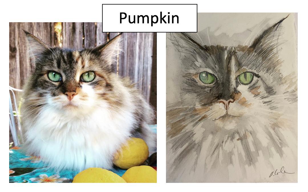 Pumpkin by Alex Cole