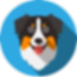 Dog4-8.png