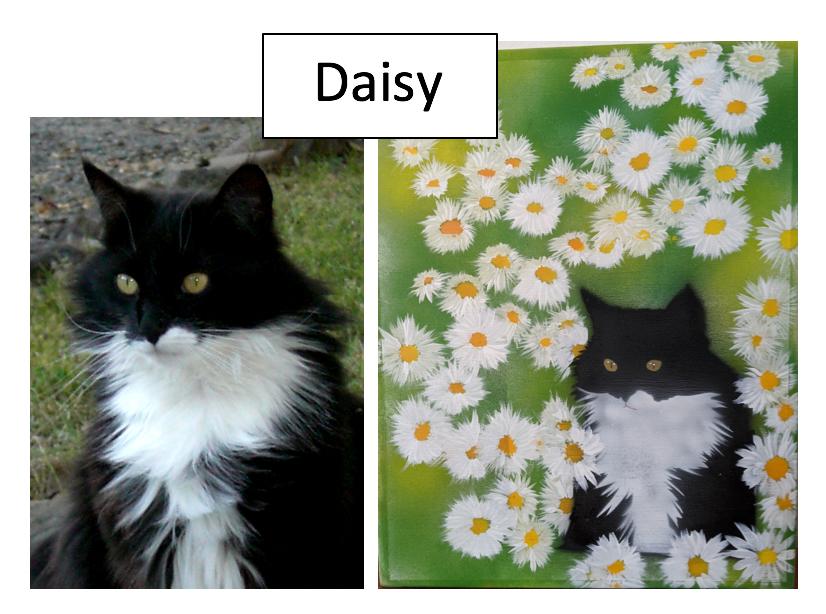 Daisy by Jim Valavanis