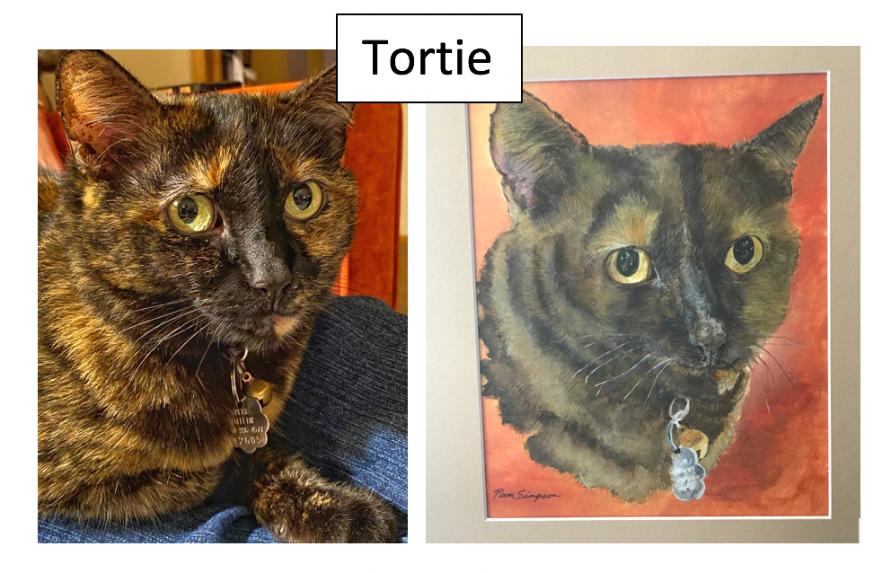 Tortie by Pam Simpson