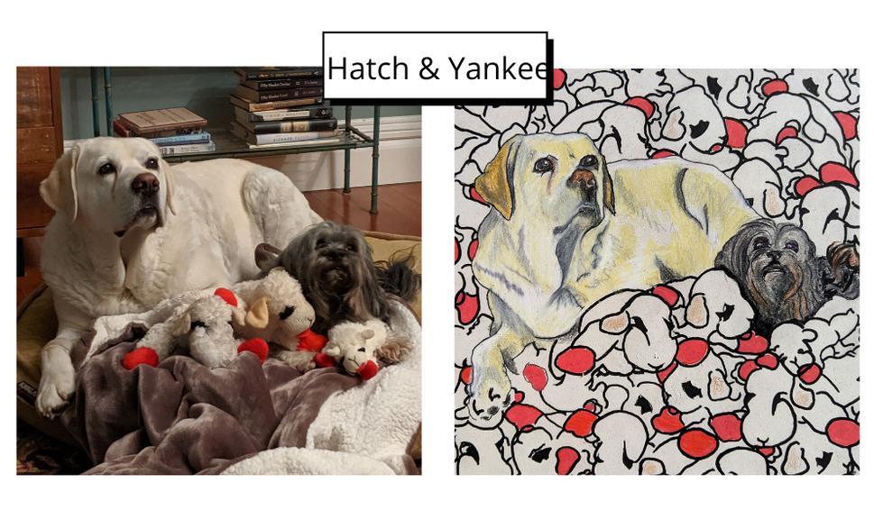 Hatch _ Yankee by Jim Valavanis