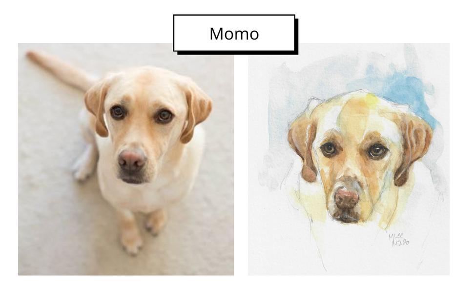 Momo by Marlene Lee
