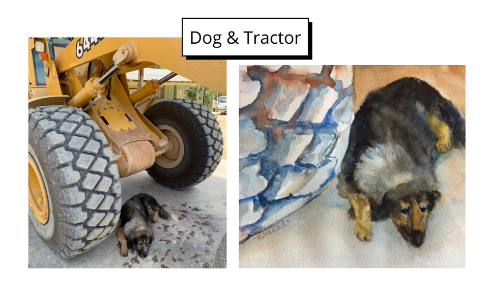 Dog _ Tractor by Barbara Mannle
