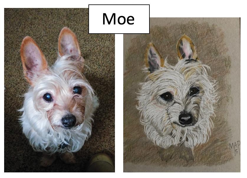 Moe by Margaret Peacock