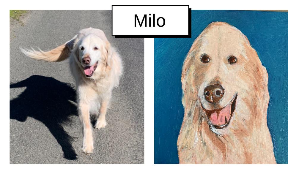 Milo by Kathi Wright