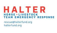 3-Halter Project logo (1).jpg