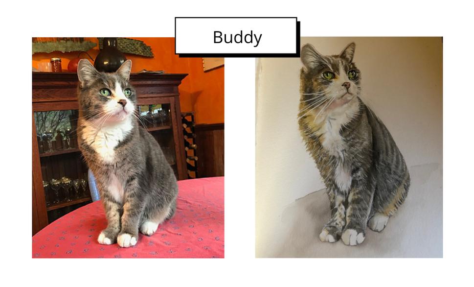 Buddy by Vivian Whittington