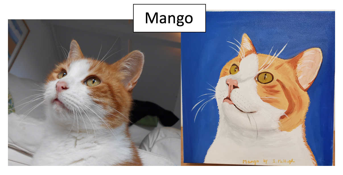 Mango by Irene McHugh