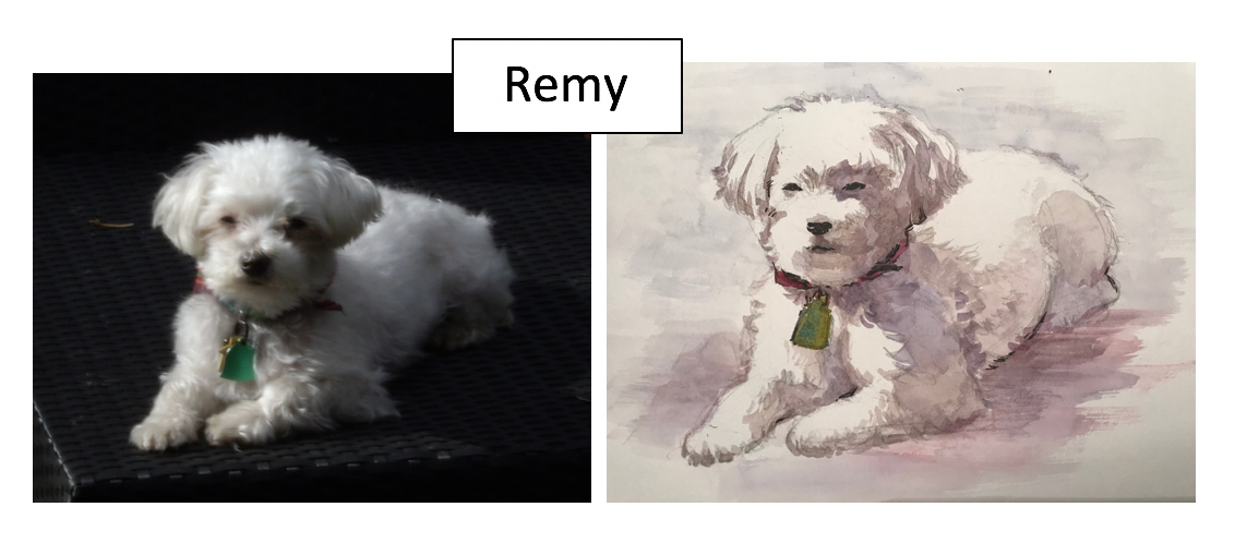 Remy by Robby McClellan