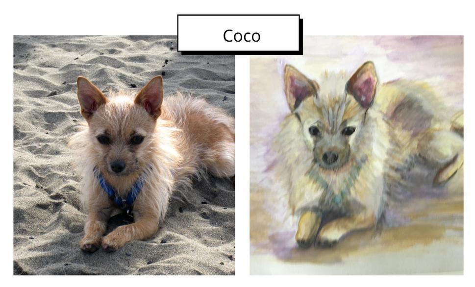 Coco by Jude Clark