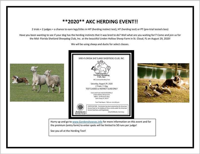 herding instinct final.jpg