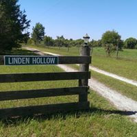Welcome to Linden Hollow