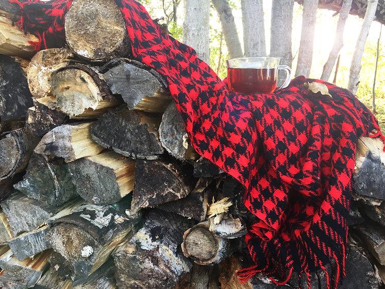 Tea on the log pile 4.jpg