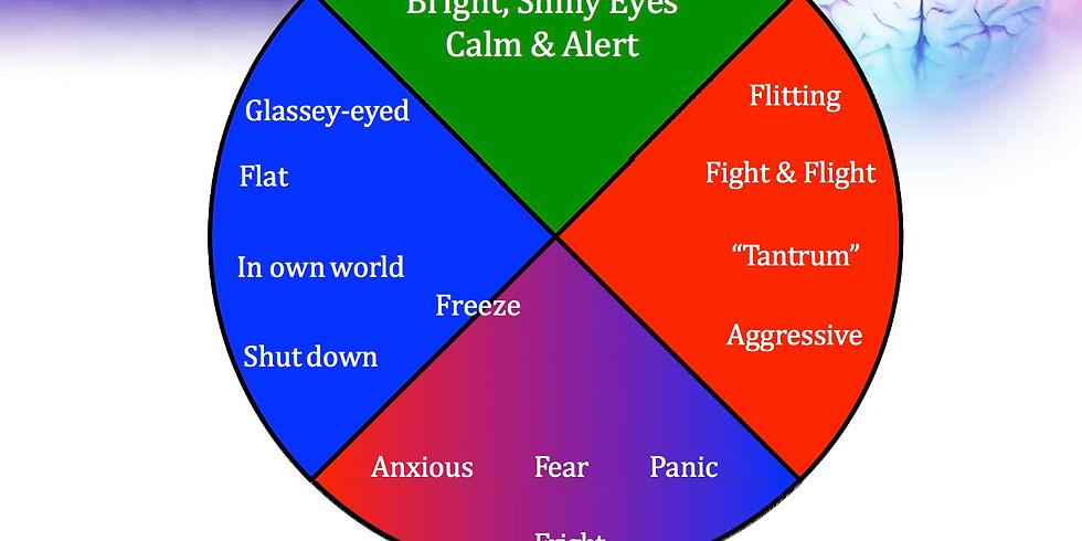 February Free Taster: Responding to Stress Responses