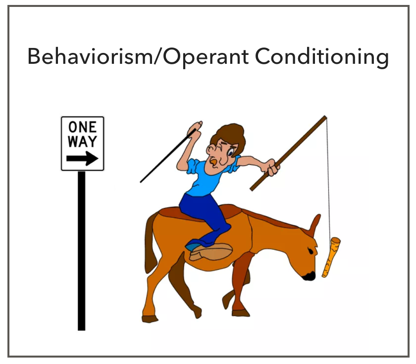 Behaviorism, also called operant conditioning, can be characterized by the carrot and the stick. The stick is the punishment that deters the child from unwanted behaviors; the carrot is the reward that motivates the child to do something new. ​ With this model, there is one way for the child to comply: the adult's way. The child's feedback and collaboration is not typically encouraged.  This one-way design often inspires resentment in children, particularly those who cannot tolerate stress, creating power struggles and putting a strain on the adult-child relationship.    Another concern is that behaviorism focuses primarily on externalizing behaviors (behaviors that are harmful to others). Internalizing behaviors (behaviors that are directed inward, such as withdrawal and depressive symptoms) are largely ignored, perpetuating the problem of adults overlooking this type of behavior as a problem.