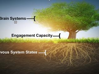 The NeuroRelational Framework in 3 Steps