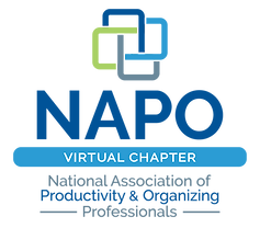NAPO-virtual-chapter-02.png