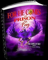 prison-2b-king-3.png