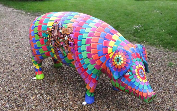 'Piñata iggy', Pigs Gone Wild, Ipswich 2016