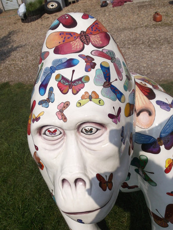 'Catch Me While You Can', GoGoGorillas 2013, Norwich