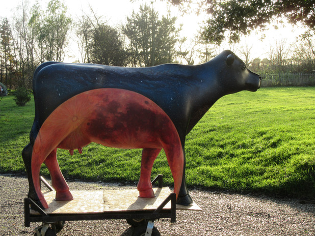 The Mooon Cow, 2021