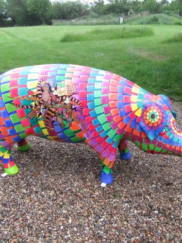 Pigs Gone Wild, Ipswich 2016