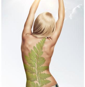 Back Pain - The Kiwi Revolution