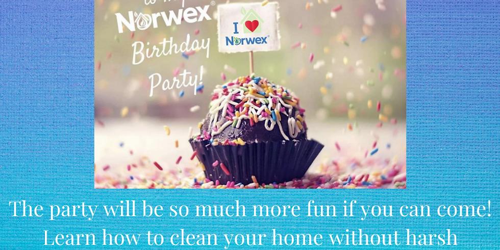 Happy Birthday Norwex, a Healthy Home Workshop