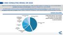 A BSD CONSULTING BRASIL EM 2020
