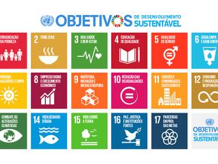 ODSs no setor privado