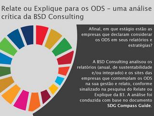 Relate ou Explique para os ODS – uma análise crítica da BSD Consulting