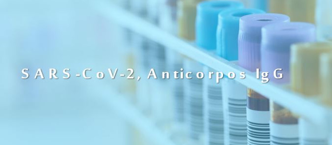 SARS-CoV-2, Anticorpos IgG