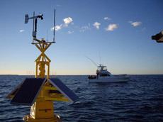 Cockburn Sound Water Monitoring