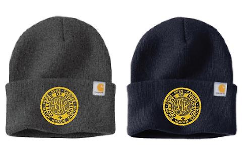 Carhartt winter hat (logo on front)