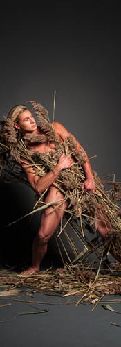 Pompus Grass