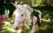 Unicorn%20Pony%20Party88_edited.jpg