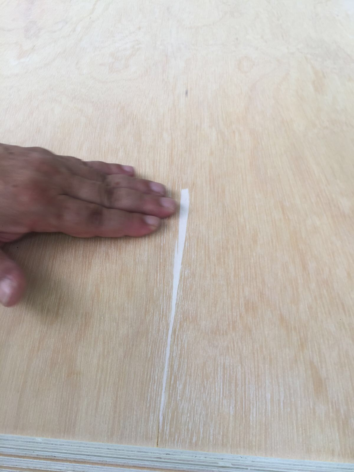 Plywood Grading Clarification