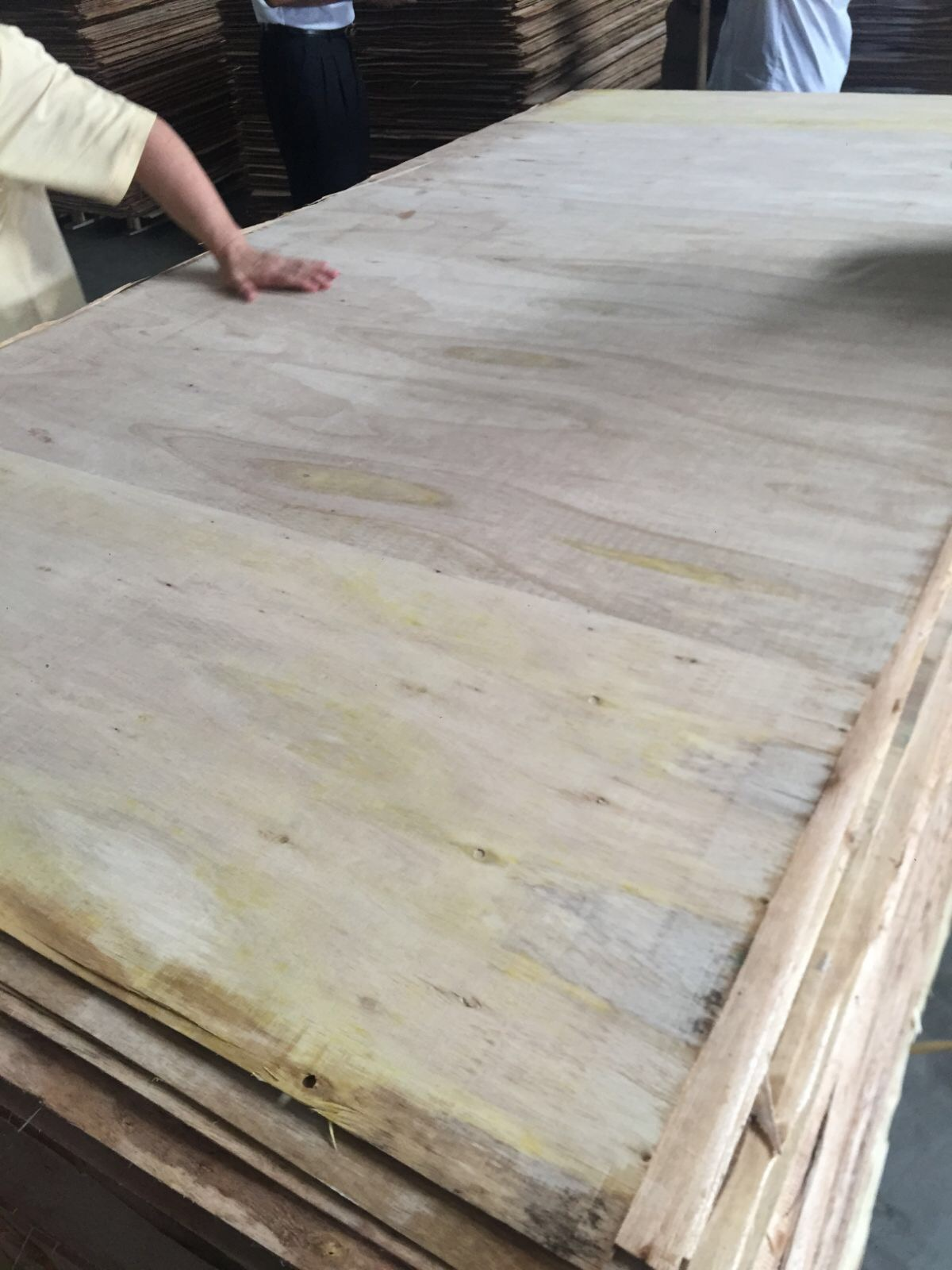 Plywood Quality Inspection