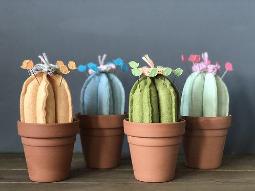 Bloomin' Cacti
