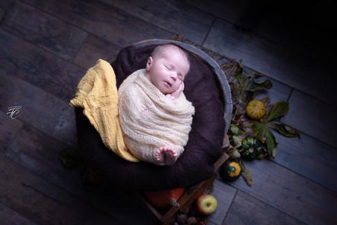 Photographie nourrisson Thème automne Langres