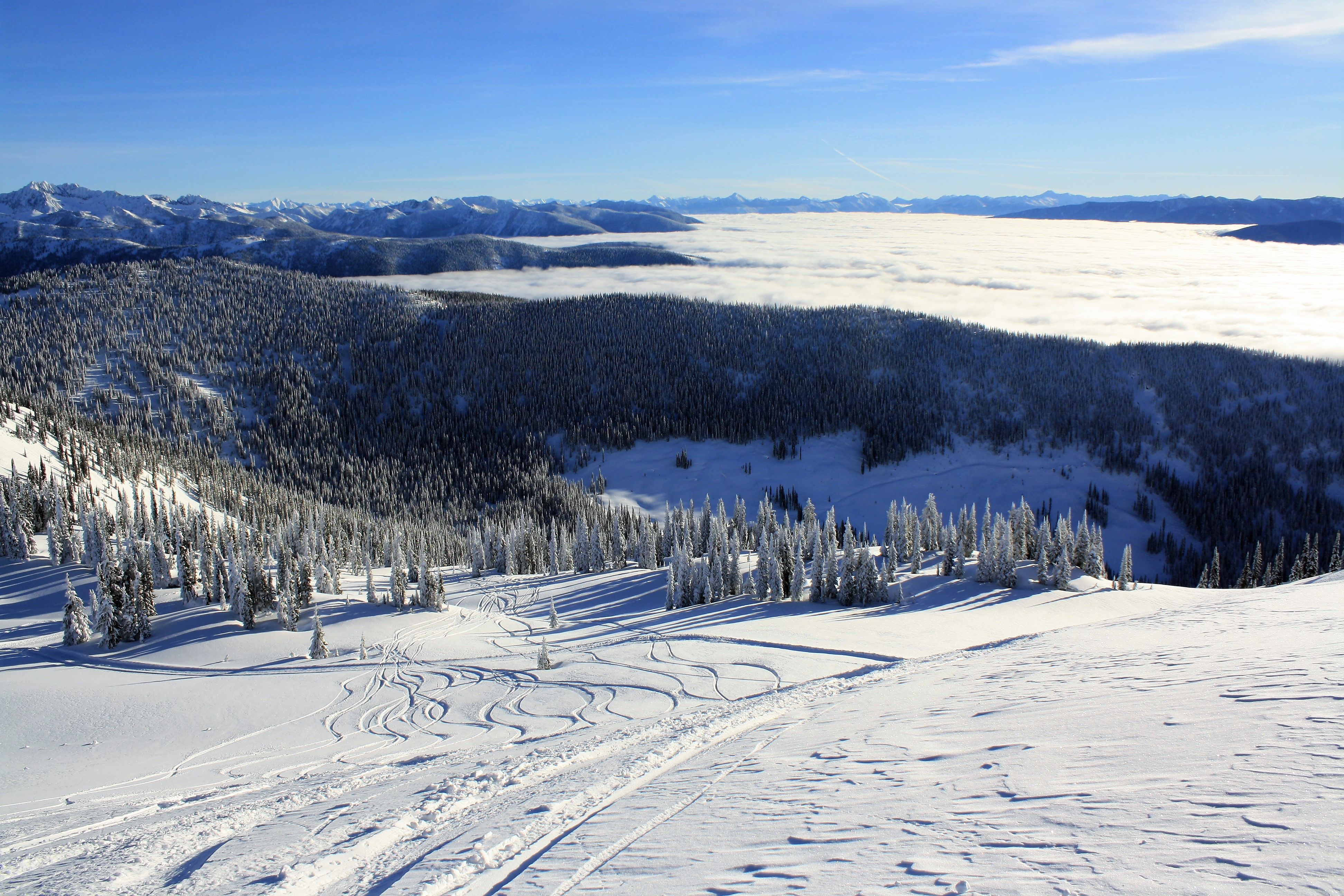 DM_nature_winter_kootenays_1829