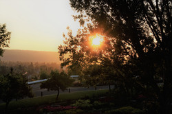 DM_nature_sunsetssunrises_570