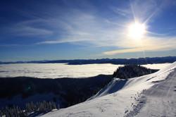 DM_nature_winter_kootenays_1828