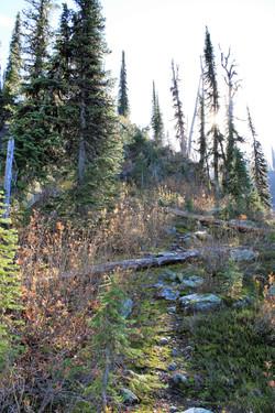 DM_nature_landscape_plaidlake_0487